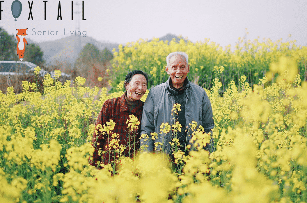An elderly couple in a field of yellow flowers