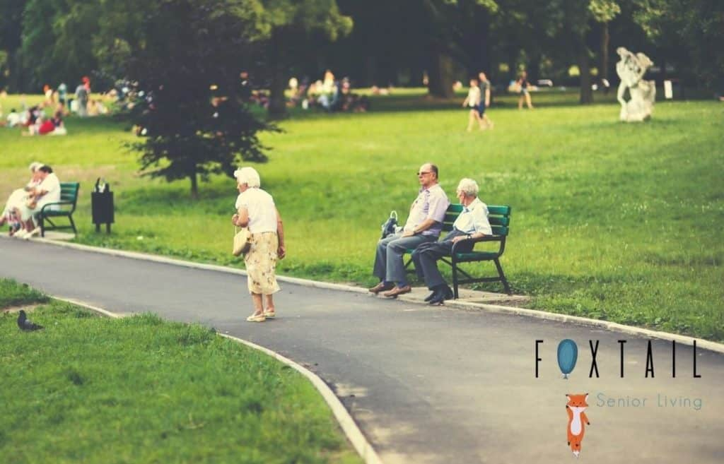 Two senior men sit on a bench, a senior woman walks through a park