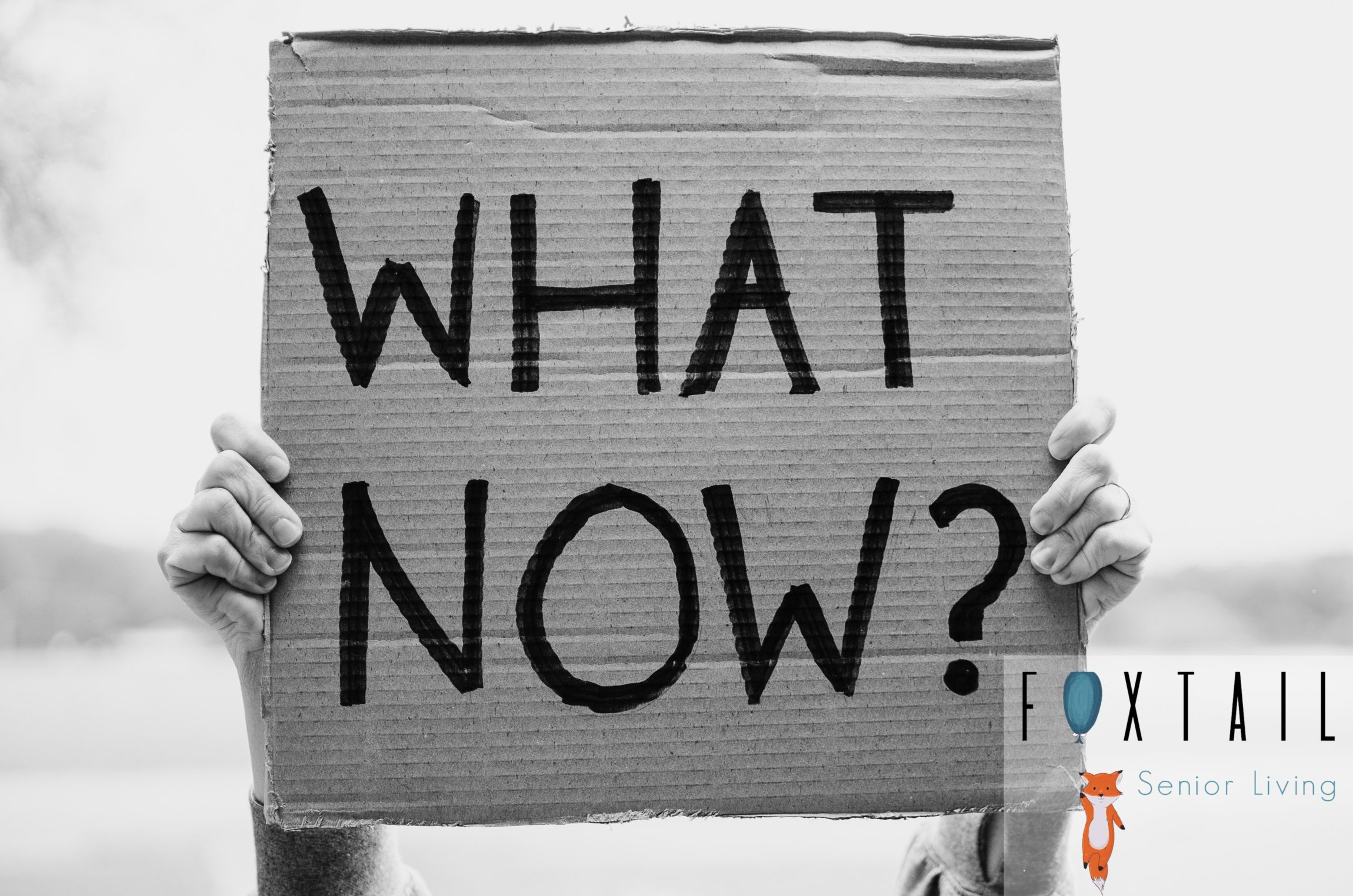 "Black and white photo of person holding cardboard sign saying ""WHAT NOW?"""
